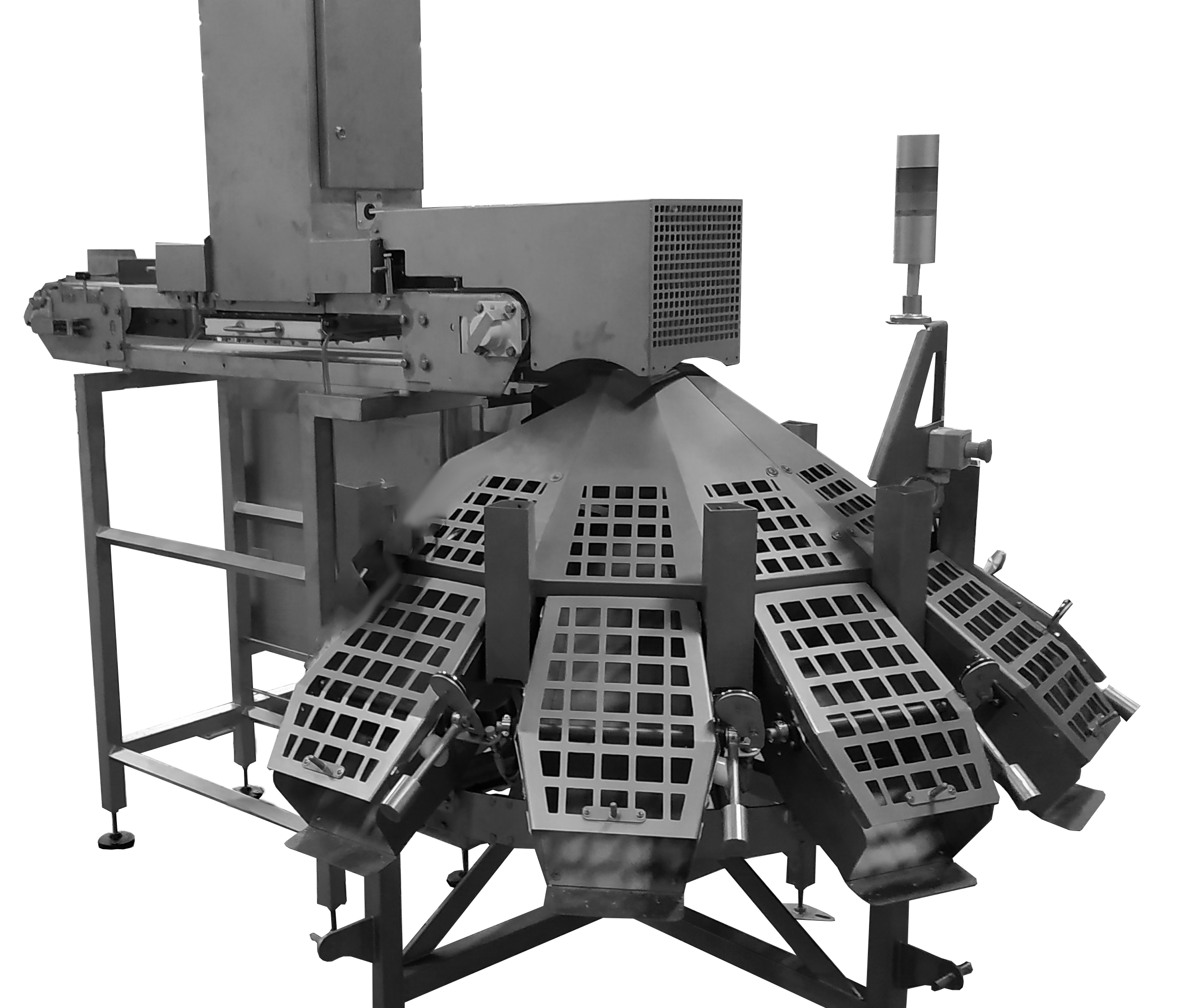 Compact video oyster grader CALIBRA CCV